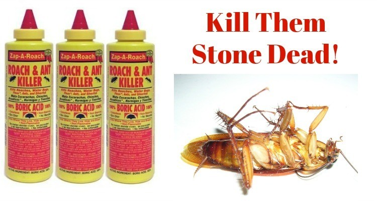 Boric Acid for Roaches